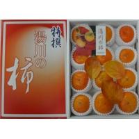 奈良 湯川の柿